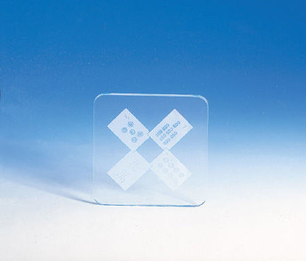 Picture of #892 Coasters Etched Glass (set of 4)